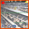 Neues Batterie-Geflügel-Gerät für Huhn-Bauernhof-Schicht