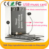 USB Music Card di affari con Your Branding Logo