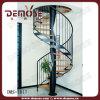 Faia escada em espiral (DMS-1017)