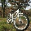 E-Bici caliente de la venta 2016 con el neumático gordo China