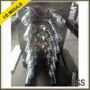 70g moulage court de préforme d'animal familier de cavités de l'arrière 12 de l'amorçage 40mm