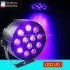 1W Verlichting DMX512 van de Disco van de Partij van het PARI van het UV LEIDENE 12PCS Effect van het Stadium de Purpere