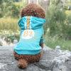Bildschirm-Drucken-Hund kleidet Haustier-Produkt-Teddybären Hoodie