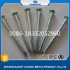 Concrete Spijkers van de Concrete Spijkers van de Steel van China/van de Groef