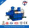 La DG de type centrifuge à plusieurs degrés horizontal de haute qualité électrique de la pompe à eau à usage intensif