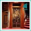 Competitive Price Villa House Elevator 합계 Elevator를 가진 호화스러운 Home Lift