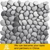 Stijl van het Mozaïek van het aluminium de Zilveren Vrije (I02)
