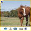Dehnbarer Wiese-Zaun (HPCF-0615)