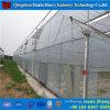 プラスチックアーチの中国の温室の製造業者からの紫外線保護温室
