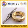 Engranaje helicoidal de OEM y gusanos para la construcción de caja de velocidades elevador