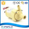 Kleine Wasser-Pumpe Gleichstrom-12V (Gleichstrom-schwanzloser Motor)