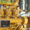 gerador da energia eléctrica do biogás do metano 625kVA