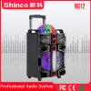 Shinco 다채로운 LED 빛을%s 가진 2018년 대형 인기 영화 베스트셀러 Bluetooth 트롤리 스피커