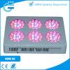 O diodo emissor de luz 3W o mais barato cresce claro para plantas médicas