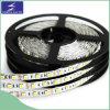DC12V SMD5050 LED 유연한 지구 빛