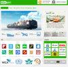 海Freight/Ocean FreightかFelixstoweイギリスへのSea Cargo Shipping Fromニンポー