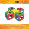 Het Lichaam dat van binnenJonge geitjes het Plastic Speelgoed van Blokken uitoefent (PT-029)