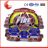 Emblemas regionais da segurança da caraterística de China da venda do preço de fábrica