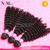 卸し売り7Aバージンの人間の毛髪のインドのマレーシアのペルーのブラジルの巻き毛