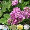 고품질 Banaba 잎 추출 - Corosolic Aicd 1%-98%