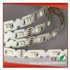 새로운 구부릴 수 있는 SMD5050/SMD2835 백색 색깔 유연한 LED 지구