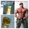 Qualité Oxymetholone Anadrol CAS : 434-07-1 pour l'évolution de muscle