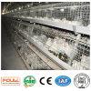 Système de cage de bonne qualité pour le poulet de viande de poulette de couche de grilleur