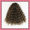 Волосы 16inches дешевых волос цены бразильских Weft курчавые