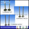 Commins Cummins Nt855 6CT Nh250를 위한 자동 Parts Engine Valve