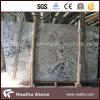 Plakken van het Graniet van Brazilië Delicatus de Witte Opgepoetste