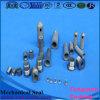 Кольцо/уплотнения механически уплотнения карбида вольфрама подгонянное