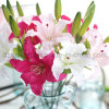 Única flor única del lirio para la boda / casa / decoración del jardín (SY-302)
