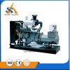 Профессиональный тепловозный генератор 1000 kVA