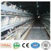 Поставленная фабрикой автоматическая клетка цыпленка слоя для птицефермы