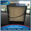 중국 제조자 자동 연료 필터 (FS19605)