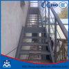 Reja de acero industrial del acero de las pisadas de escalera