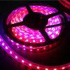Illuminazione di nastro flessibile del LED SMD5050 Ws2812b DC5V