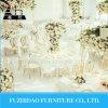 형식 성 신부와 신랑 백색 결혼식 의자