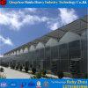 Aquaponic 시스템 녹색 집을%s 다중 경간 PC 장 온실