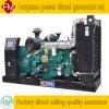 Tipo silenzioso gruppo elettrogeno diesel di 250kw/312.5kVA