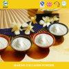 Alibaba Express China Optimum Nutrition Supplement Collagen Protein Powder