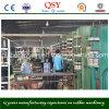 Tipo hidráulico máquina de vulcanización de Qishengyuan
