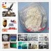 L-Carnitina della polvere di GMP Levocarnitine per il dimagramento di perdita di peso (CAS 541-15-1)