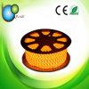IP68 impermeabilizan la iluminación de tira de la piscina LED