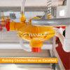 Buveur automatique de raccord de volaille de pipe de PVC d'usine de Qingdao