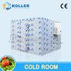 Einteiliger kondensierender Gerät ausgerüsteter Kühlraum mit mit hoher Schreibdichteisolierungs-Panels