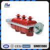 Trenner des Schalter-Sf6 Gas-Insulated Innen24kv