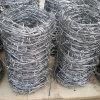 電流を通された/PVCの上塗を施してあるとげがある鉄ワイヤー