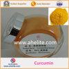 Polvere organica della curcumina dell'estratto 95% di prezzi della curcumina