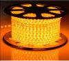 Indicatore luminoso di striscia di colore LED di illuminazione 220V SMD3528 60LEDs/M di festa singolo